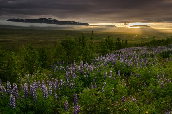Sonnenuntergang in Varmahlíð