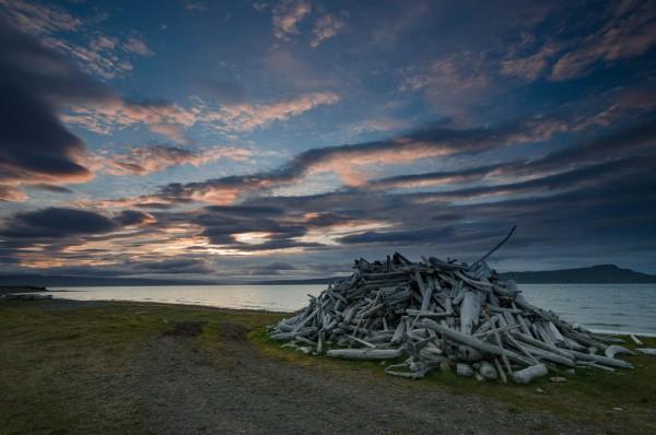 Treibholz an der Nordküste von Island kurz vor Sonnenuntergang