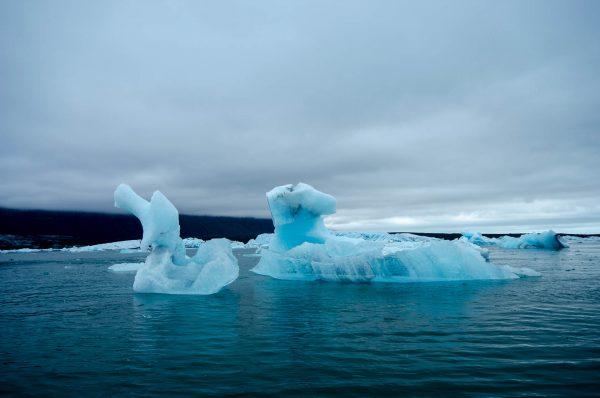 Jökulsárlón, schwimmende Eisberge