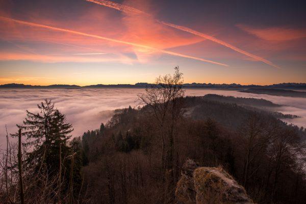 Nebelmeer über dem Zürichsee bei Sonnenaufgang