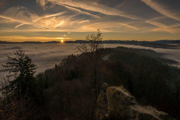 Sonnenaufgang im Dezember auf dem Uetliberg