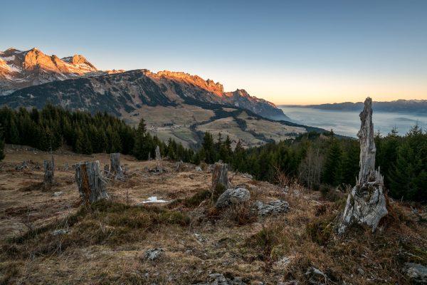Aussicht vom Moosbühl Richtung Chrüzberge