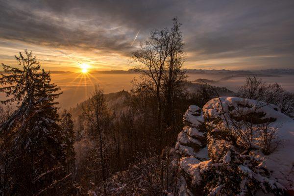 Sonnenaufgang auf dem Uetliberg