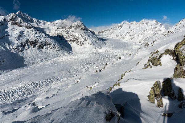 Aletschhorn und Aletschgletscher im Winter