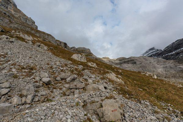 Weg Richtung Gletscher