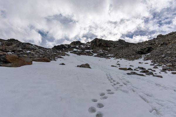 Aufstieg neben der Fuorcla dal Cunfin