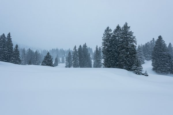 Es beginnt zu schneien