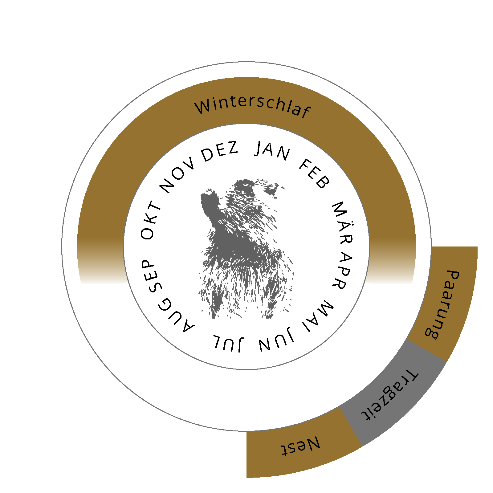 Jahreszyklus des Murmeltiers