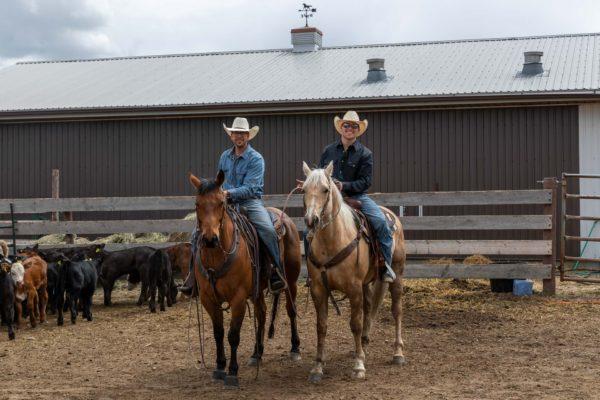 Zwei Cowboys versuchen jeweils ein Kalb zu fangen