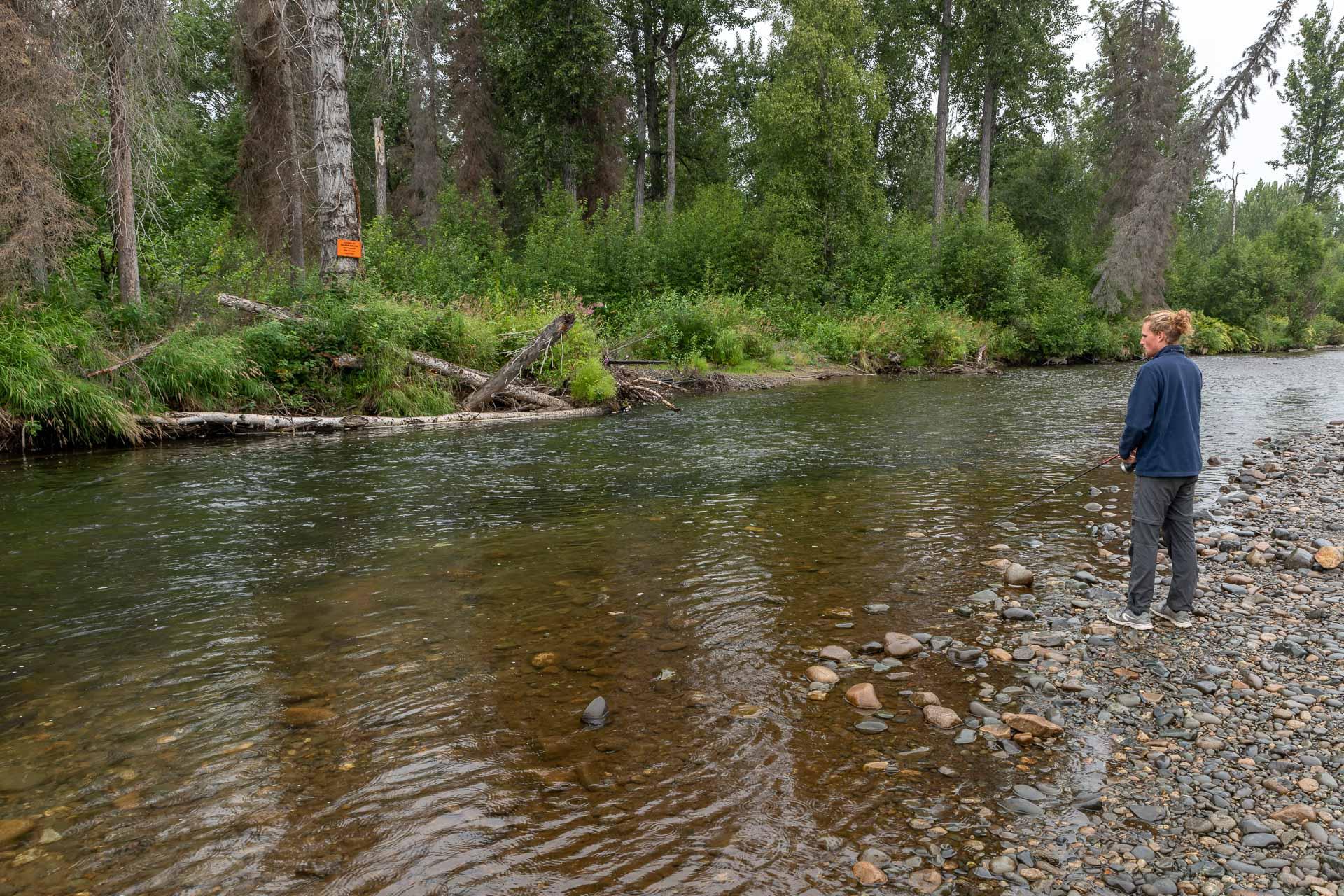 Unser erster Fluss gefüllt mit Lachsen