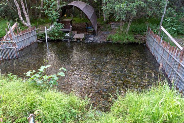 Lachs Forschungsstation