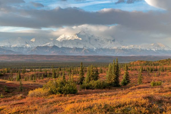 Denali Nationalpark