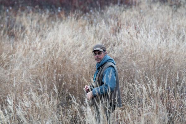 Greg auf der Suche nach Elchen