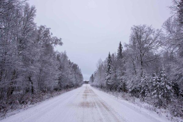 Petersville Road