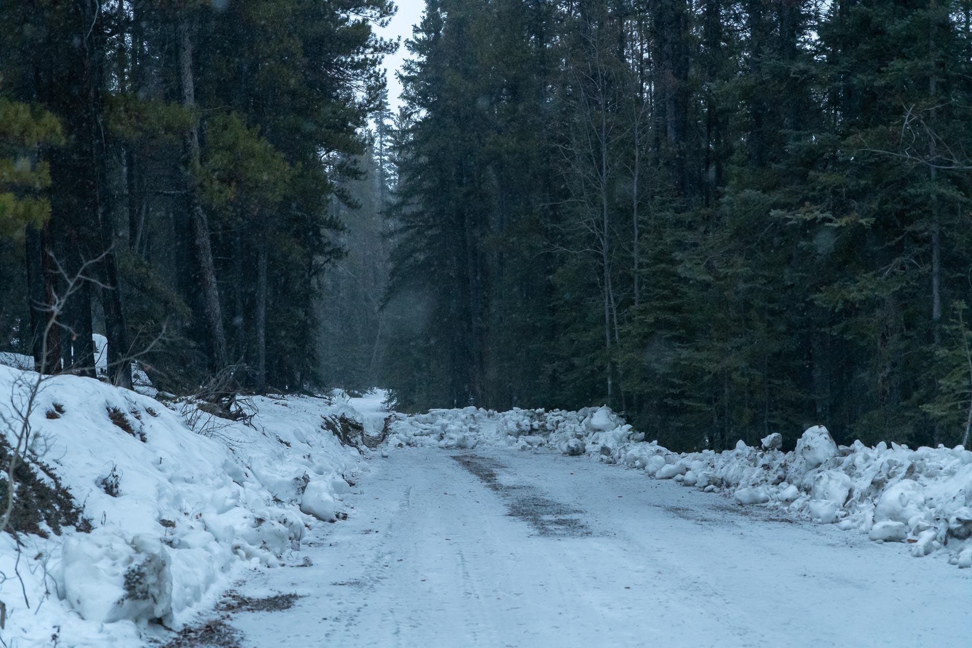 Einfahrt zur Morley Lake Recreation Site