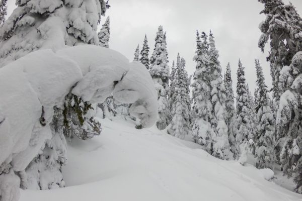 Powder King Mountain
