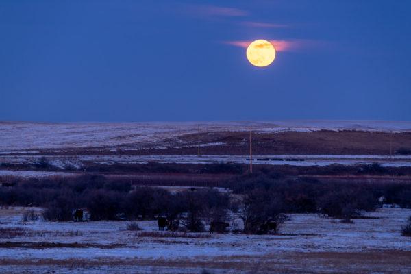 Mondaufgang über der Ranch