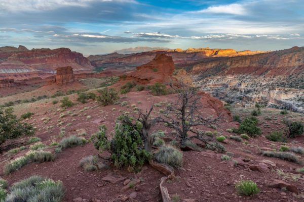 Capitol Reef Nationalpark