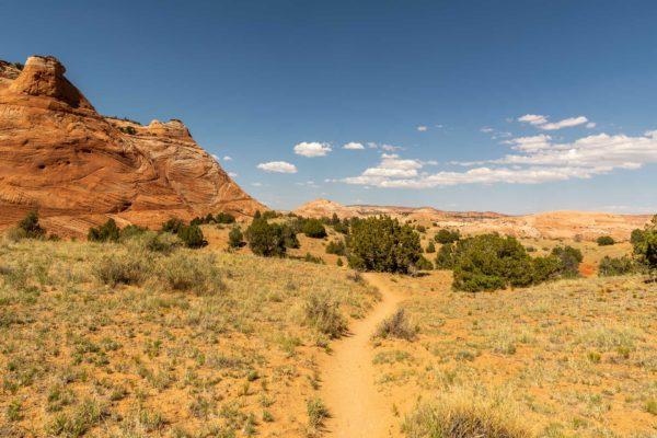 Weg zum Zebra Slot Canyon