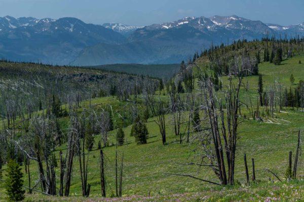 Blick zurück zur Teton Range